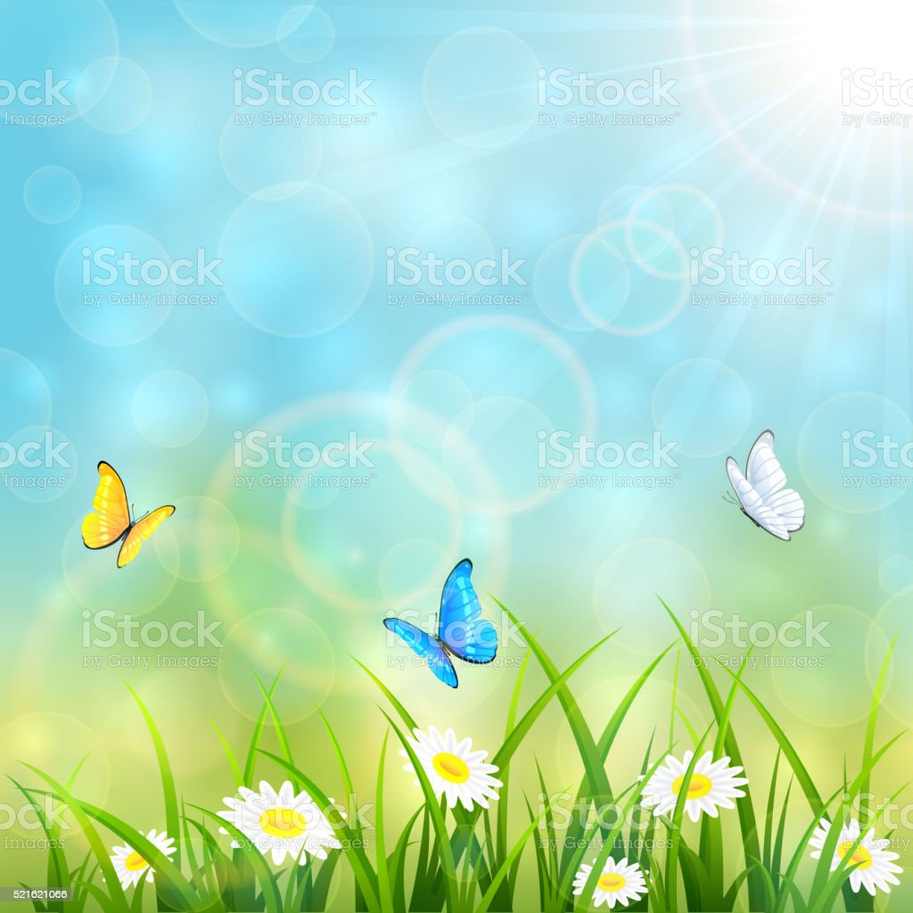 Flying butterflies on blue summer background vector art illustration