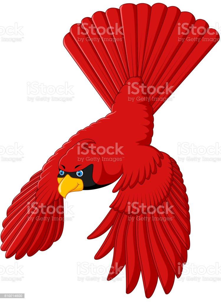 flying cardinal bird vector art illustration