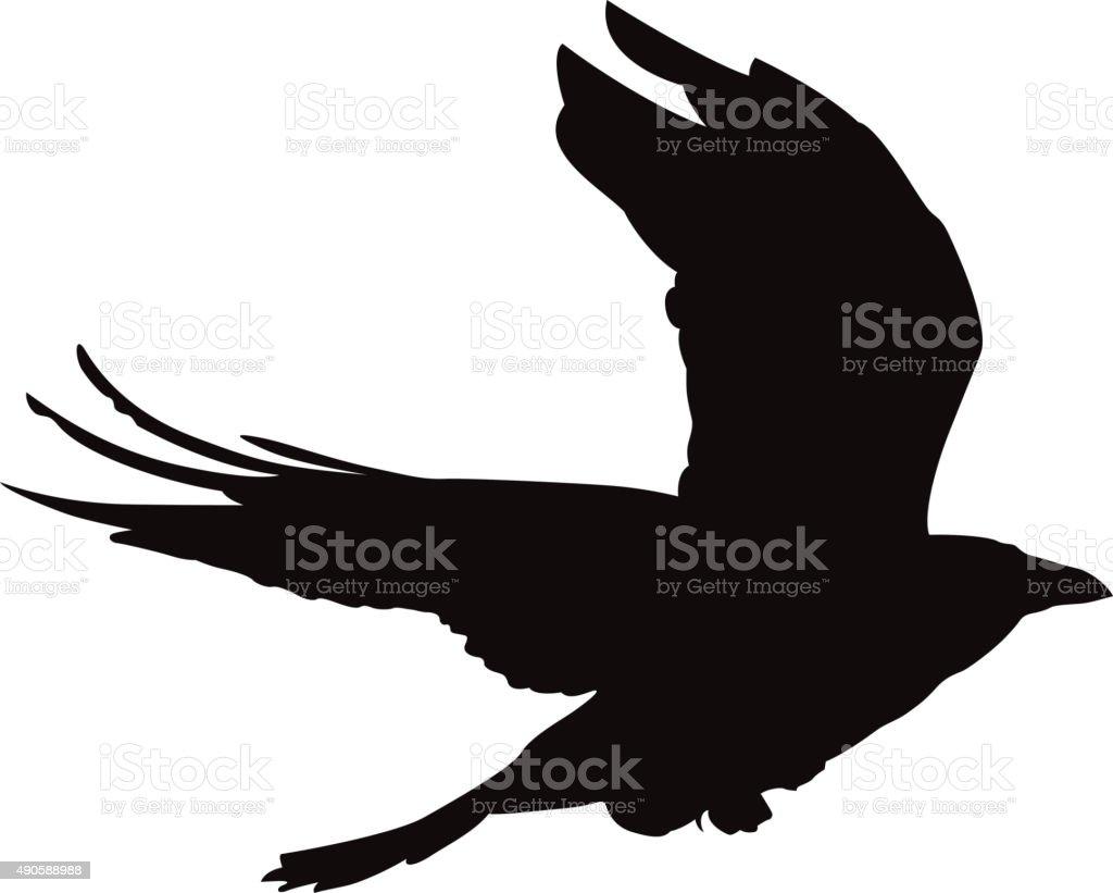 Flying crow vector shape vector art illustration
