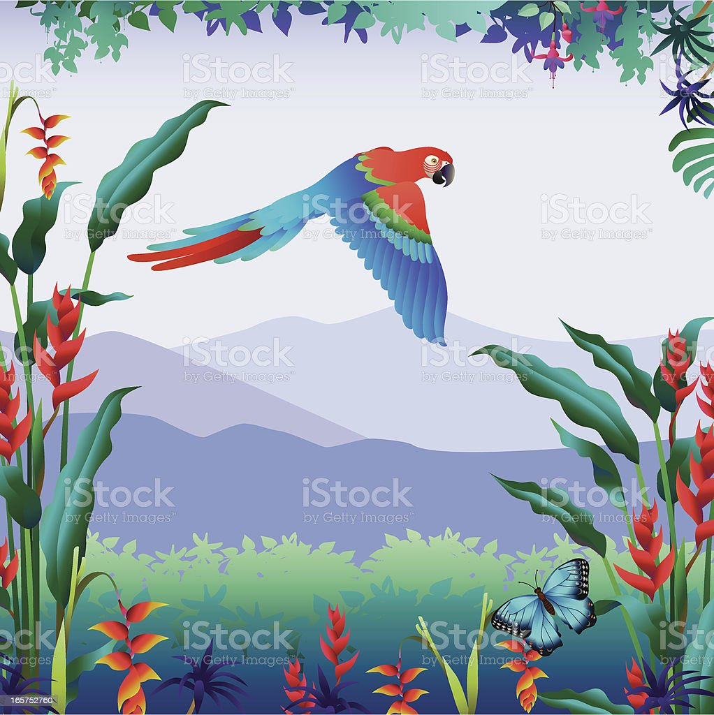 flying parrot tropical mountain view vector art illustration