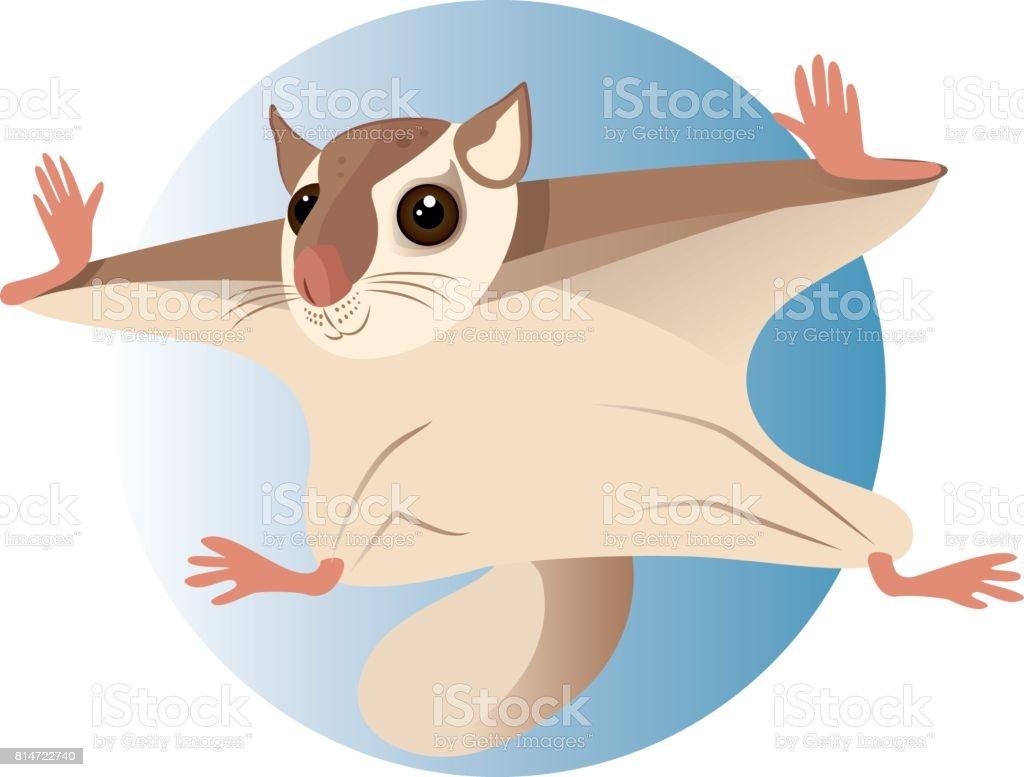 Flying Squirrel vector art illustration