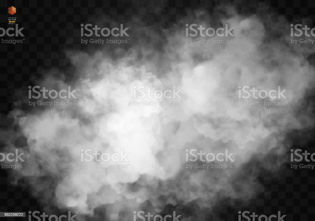 Fog or smoke isolated transparent special effect vector art illustration