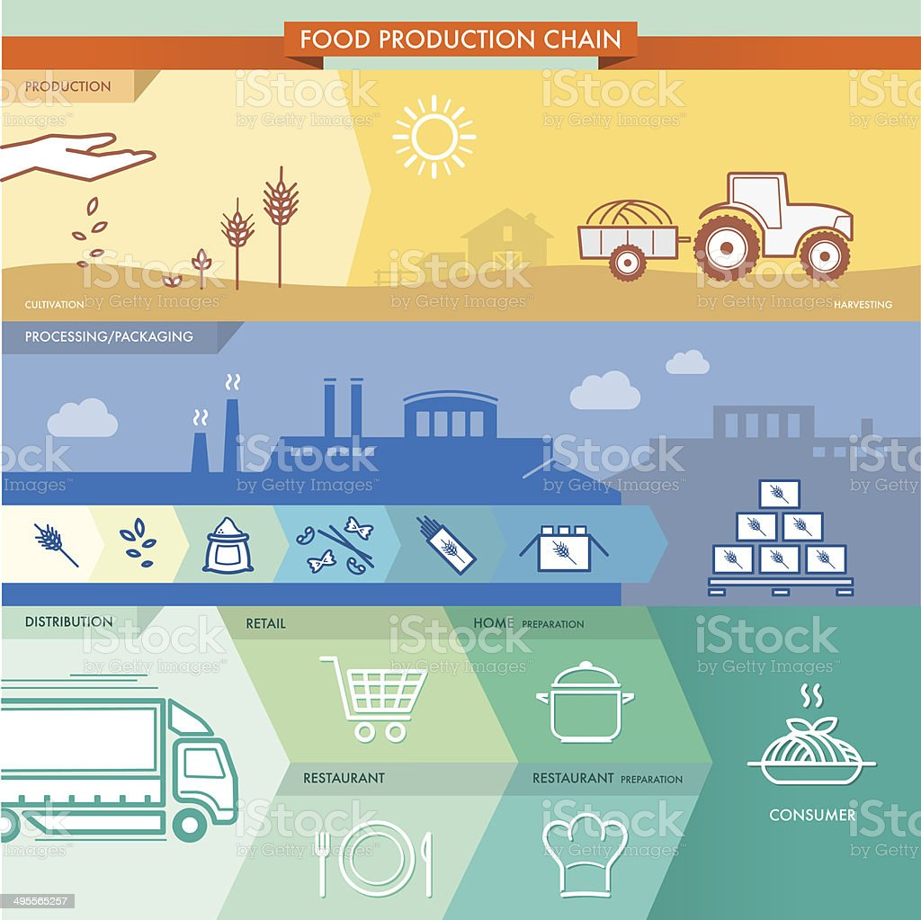 Food production chain vector art illustration