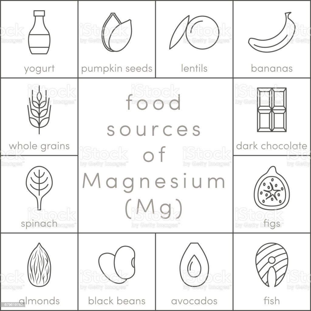 Food sources of magnesium vector art illustration