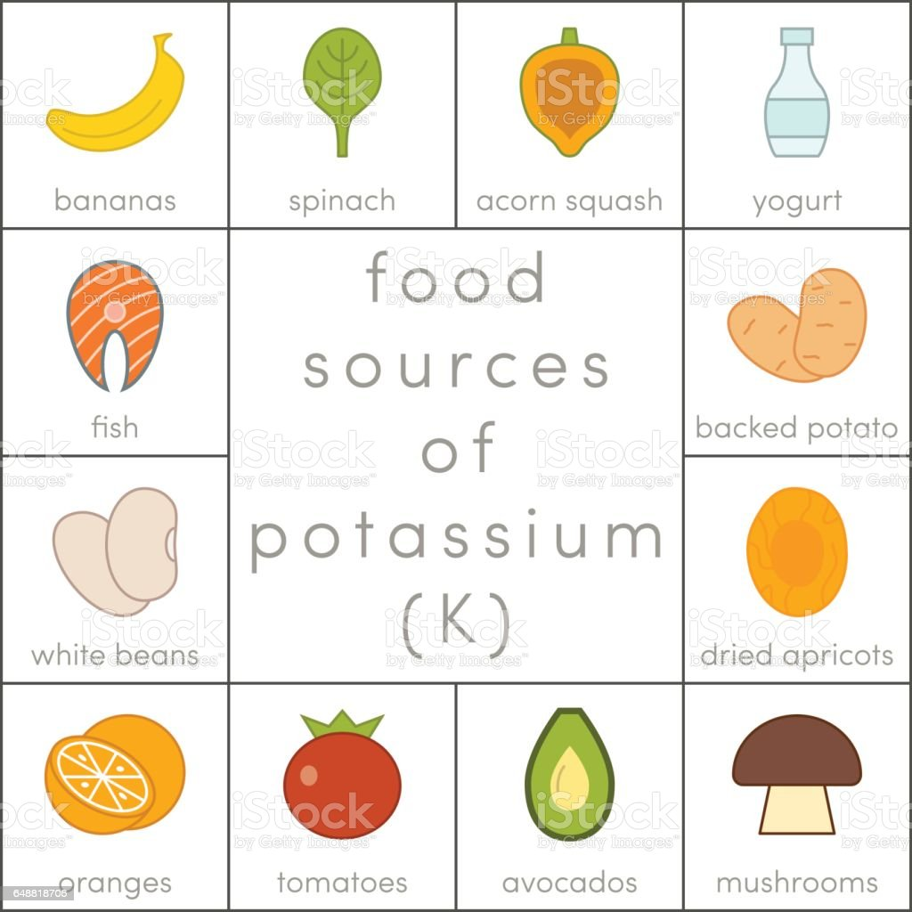 Food sources of potassium vector art illustration