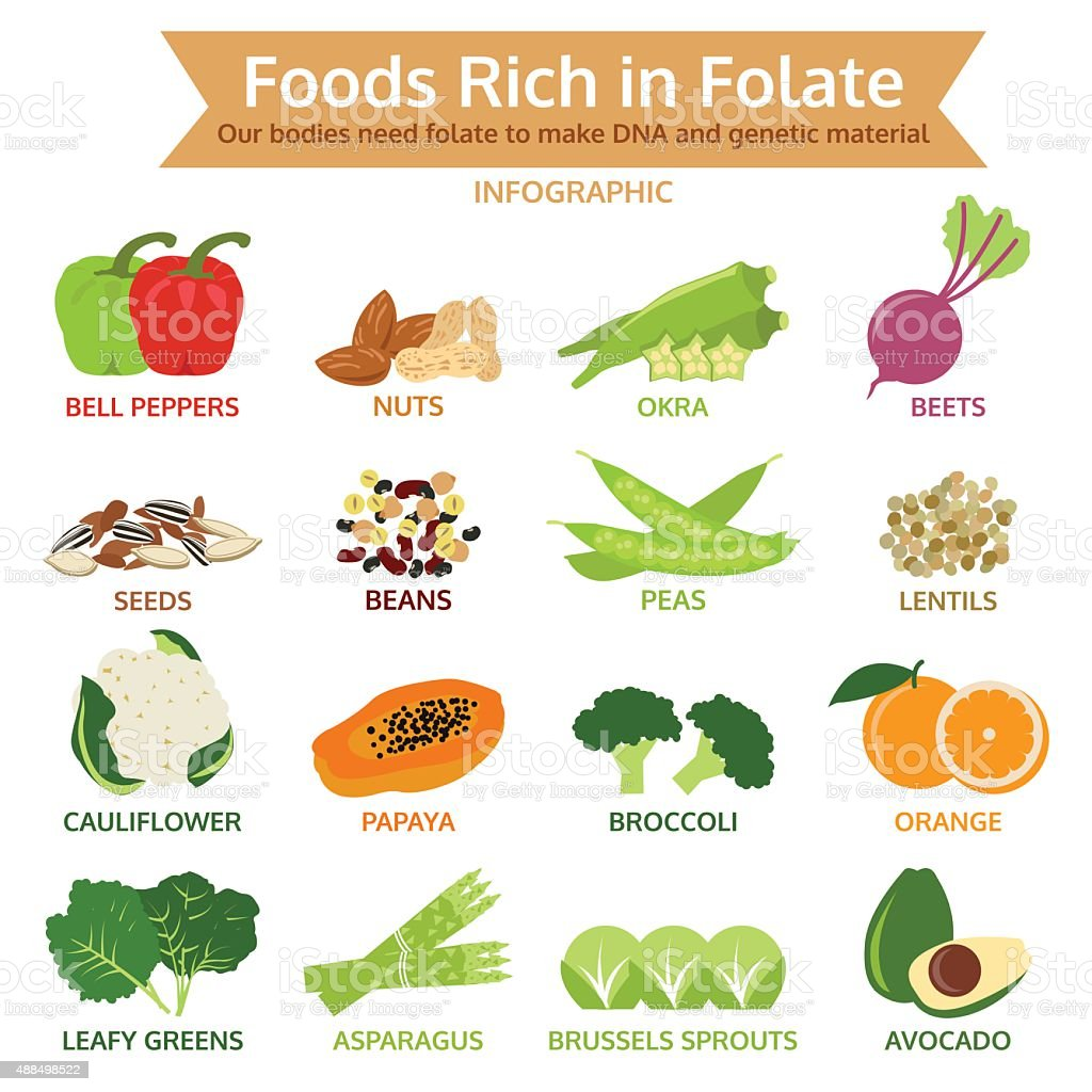 foods rich in folate, vegetable and fruit icon vector illustration vector art illustration