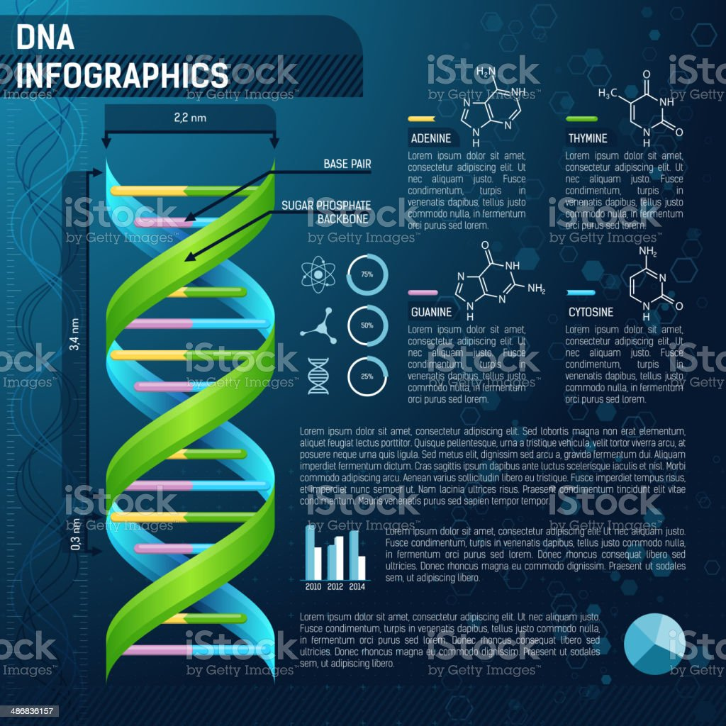 DNA for science infographics vector art illustration