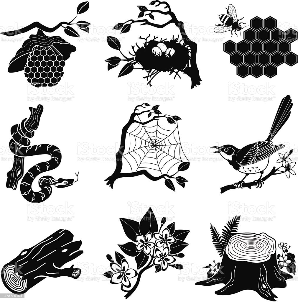 forest animals, plants in black and white vector art illustration