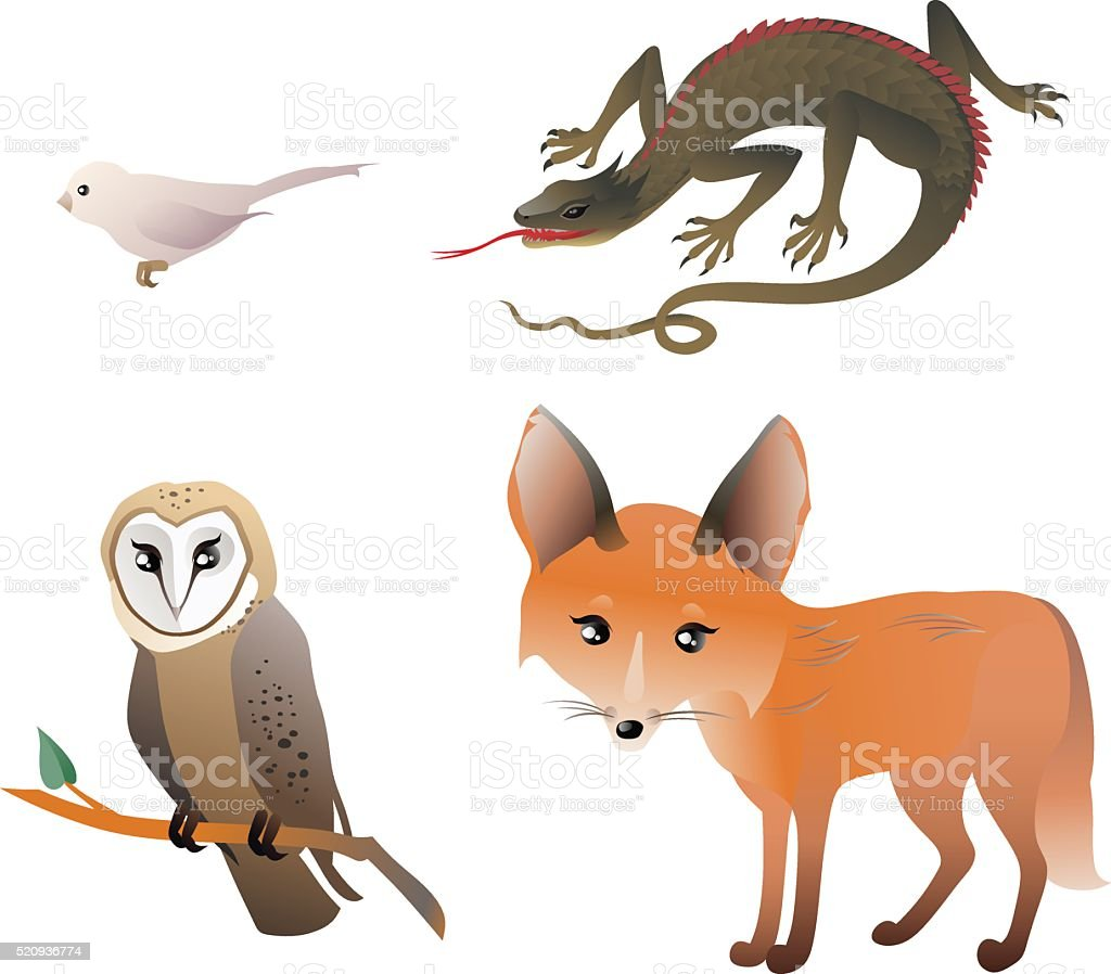 Forest Animals Set – Red Fox, Owl, Bird, Lizard vector art illustration