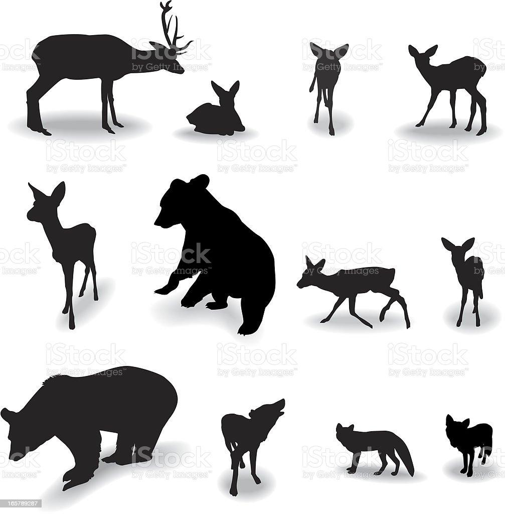 Forest animals vector art illustration