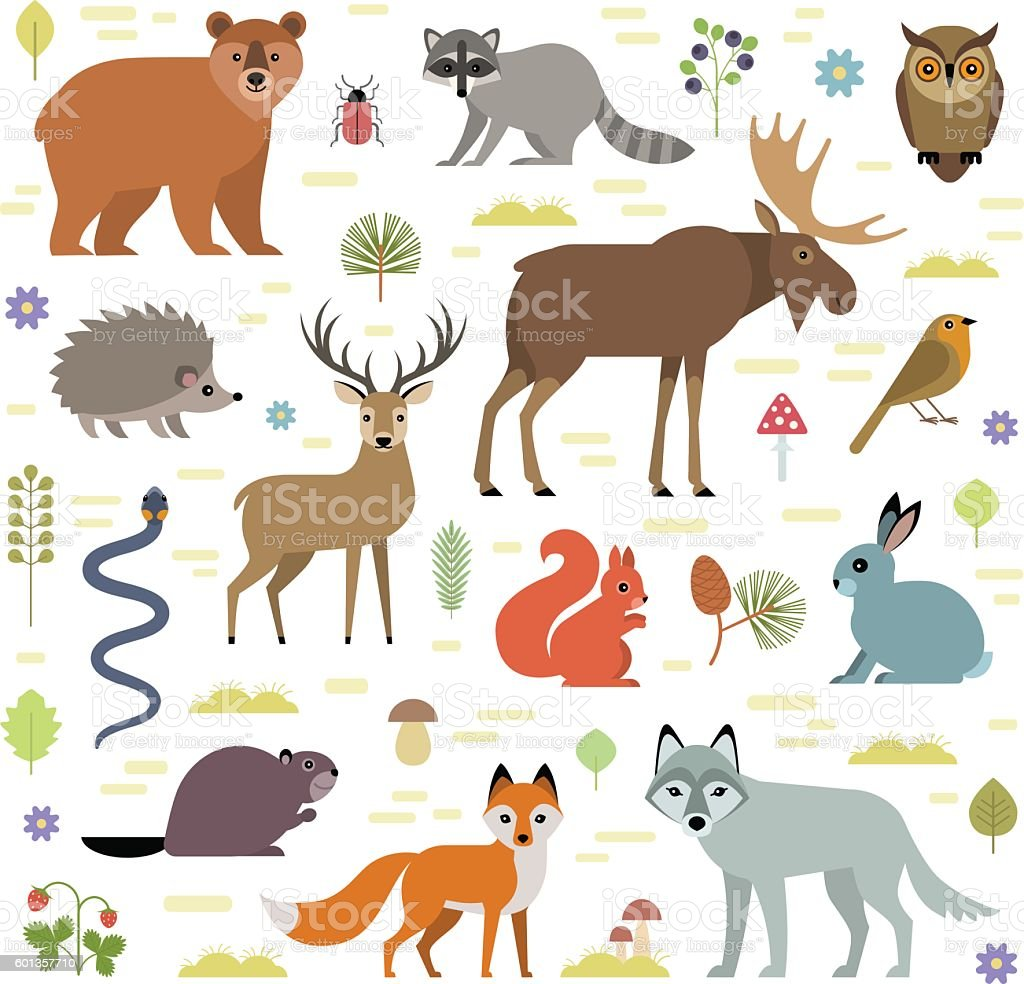 Forest animals vector art illustration