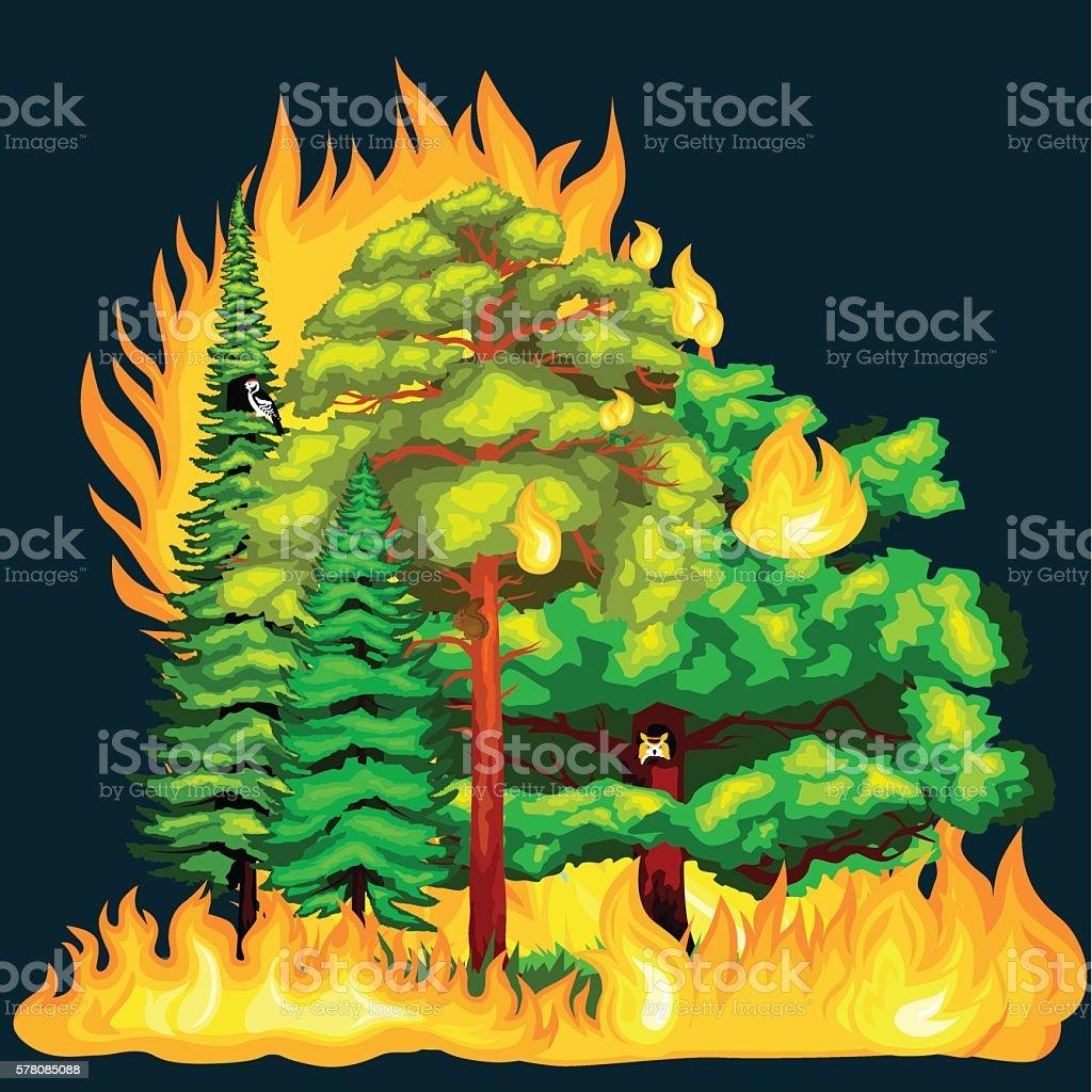 Forest Fire,  in  landscape damage, nature ecology disaster, hot burning vector art illustration