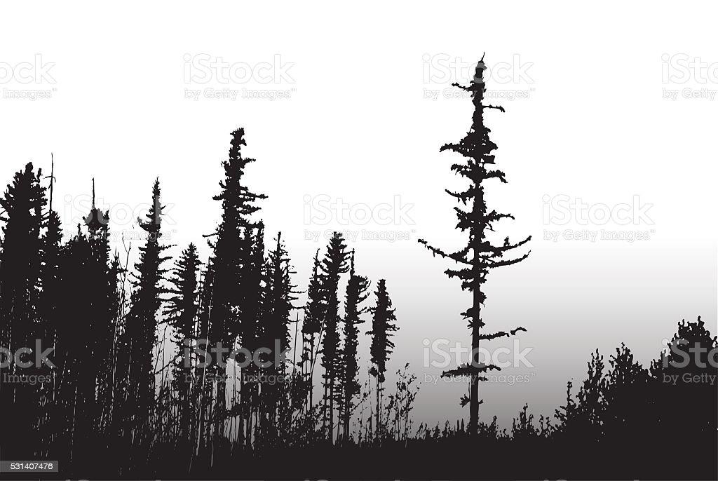 Forest Fire Surviving Trees vector art illustration