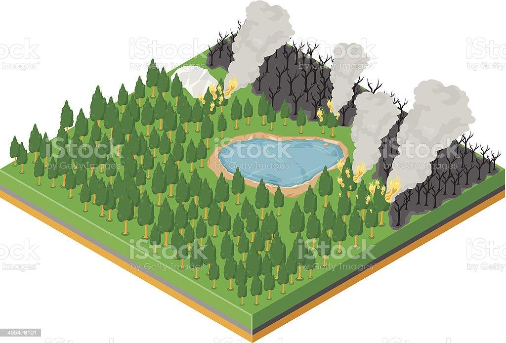 Forest Fire vector art illustration