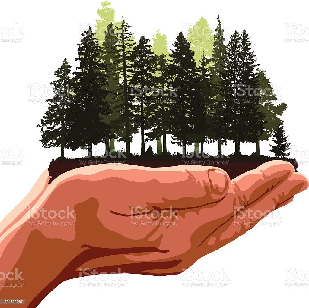 Forest in hands vector art illustration