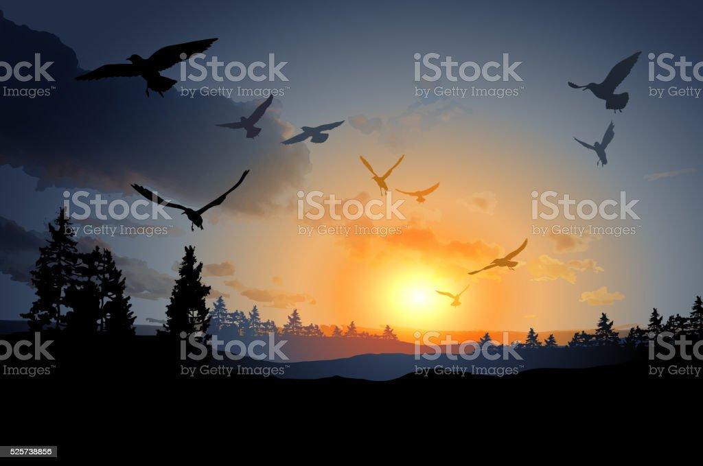 forest landscape with flock of flying bird vector art illustration