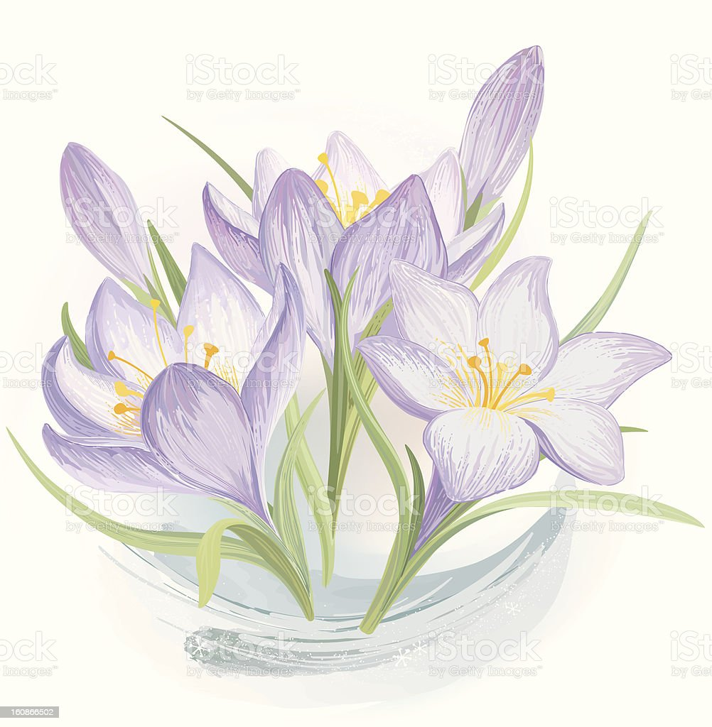 Forest lily royalty-free stock vector art