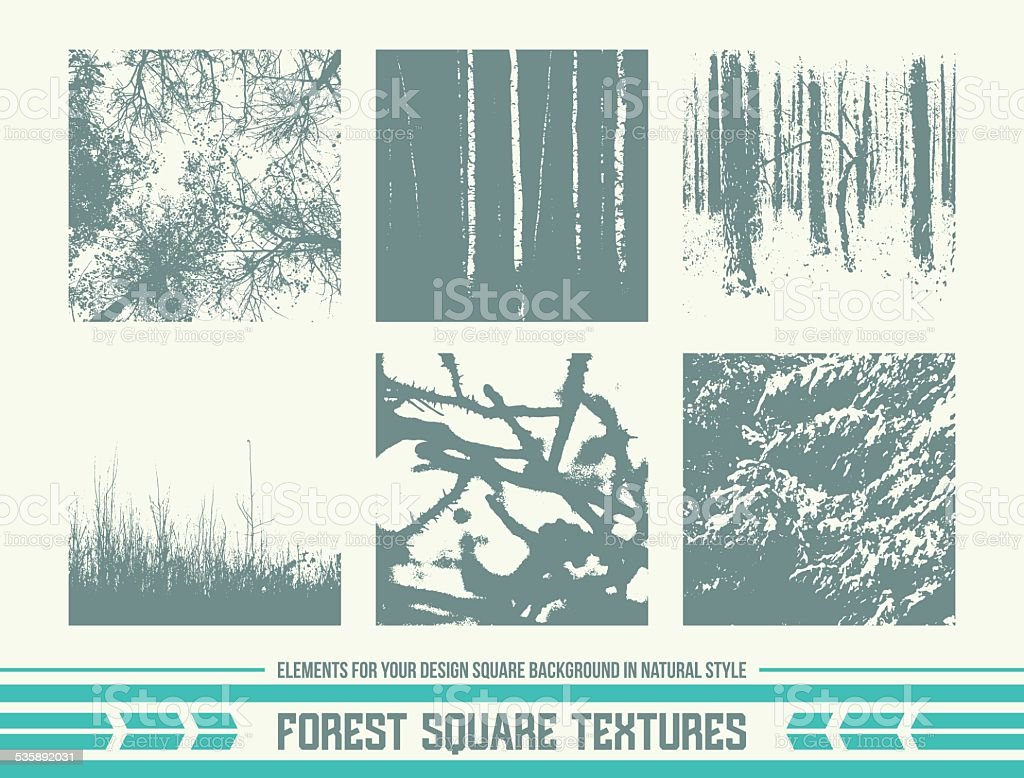 Forest square textures vector art illustration