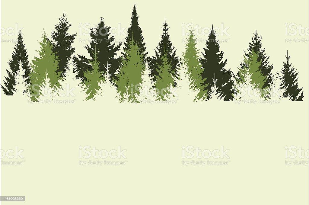 Forest stock vector art 481003669   iStock