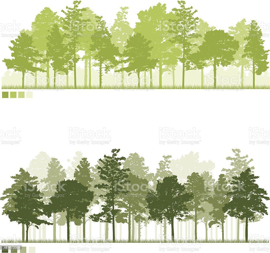 Forest vector art illustration