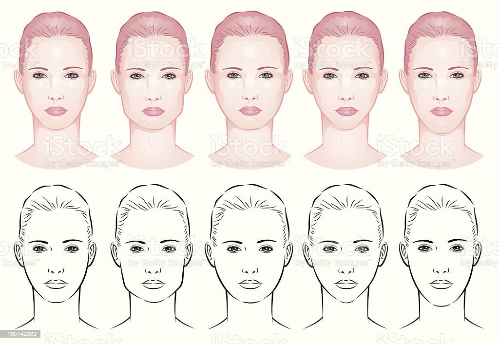forms of a female face royalty-free stock vector art