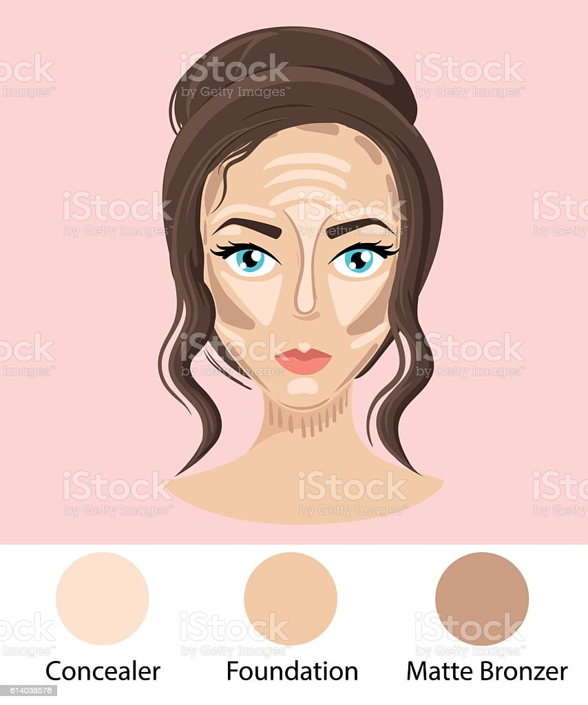 Foundation concealer matte bronzer. Make up face How to contour vector art illustration