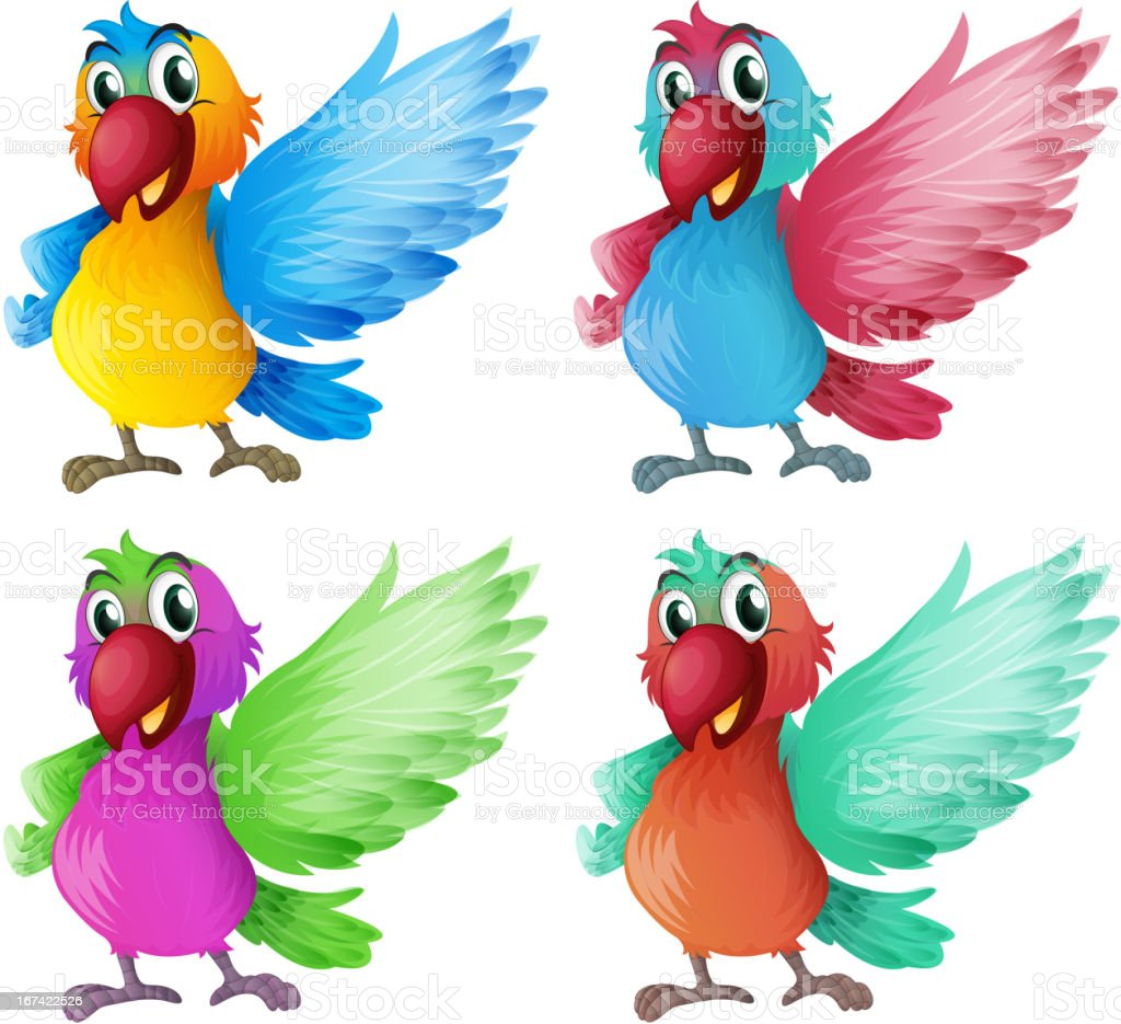 Four adorable parrots royalty-free stock vector art