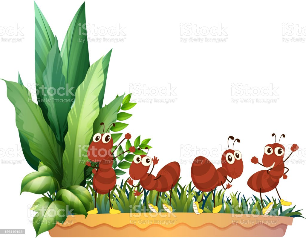 Four ants royalty-free stock vector art