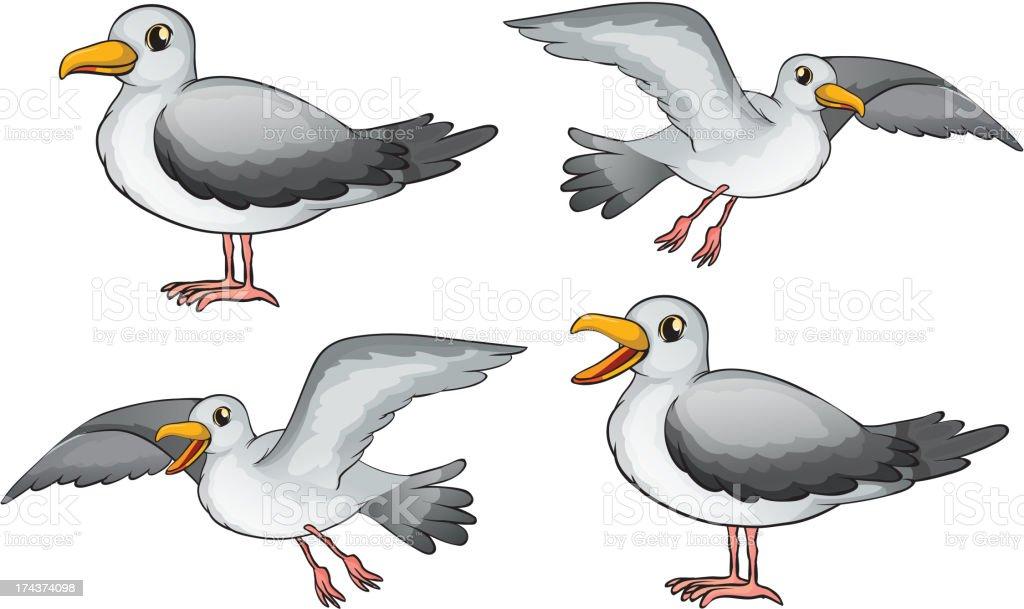 Four birds royalty-free stock vector art