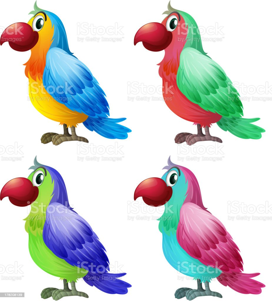 Four colorful parrots royalty-free stock vector art