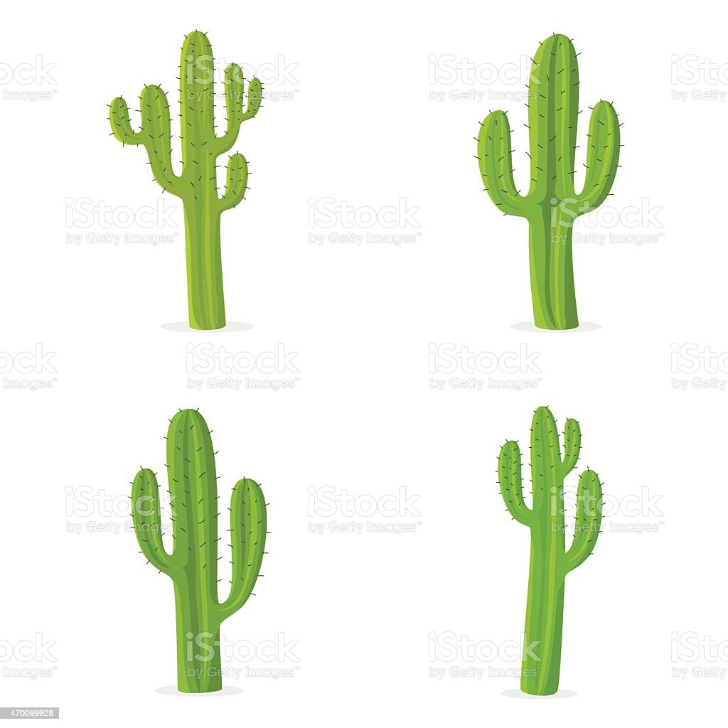 Four different cacti against white background vector art illustration