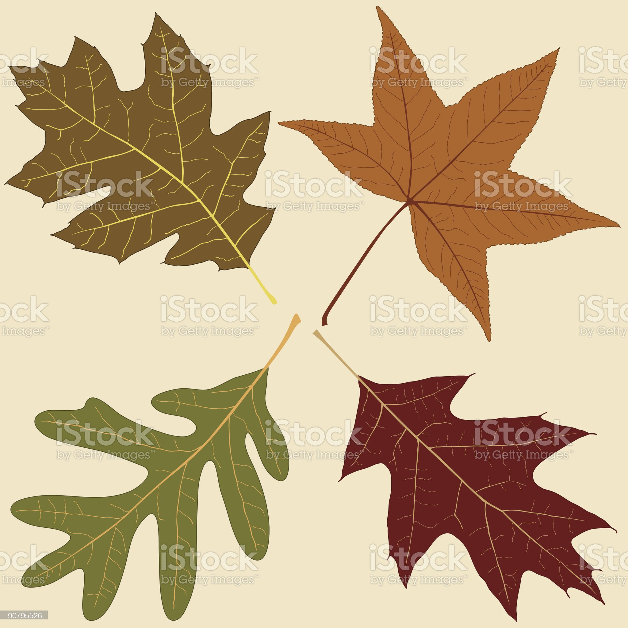 Four Fall Leaves royalty-free stock vector art