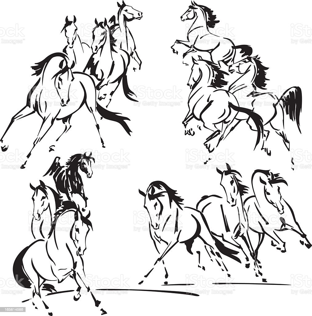 Four groups of horses vector art illustration