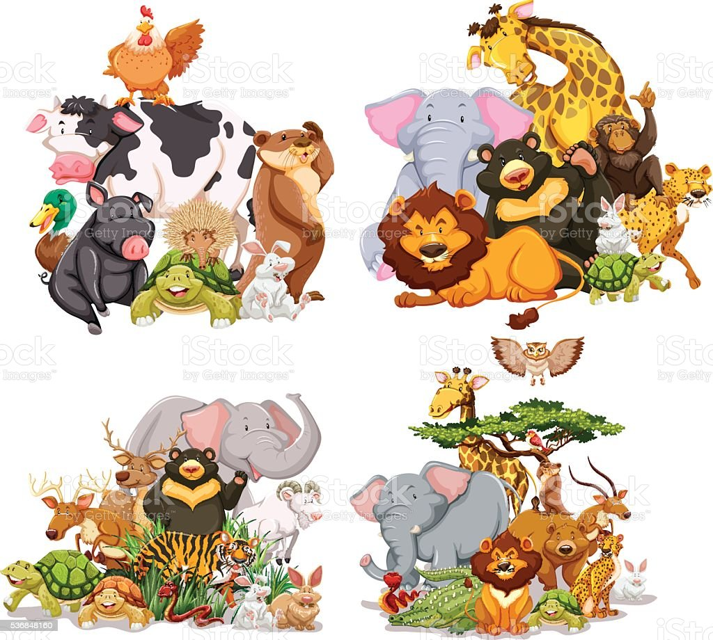 Four groups of wild animals vector art illustration