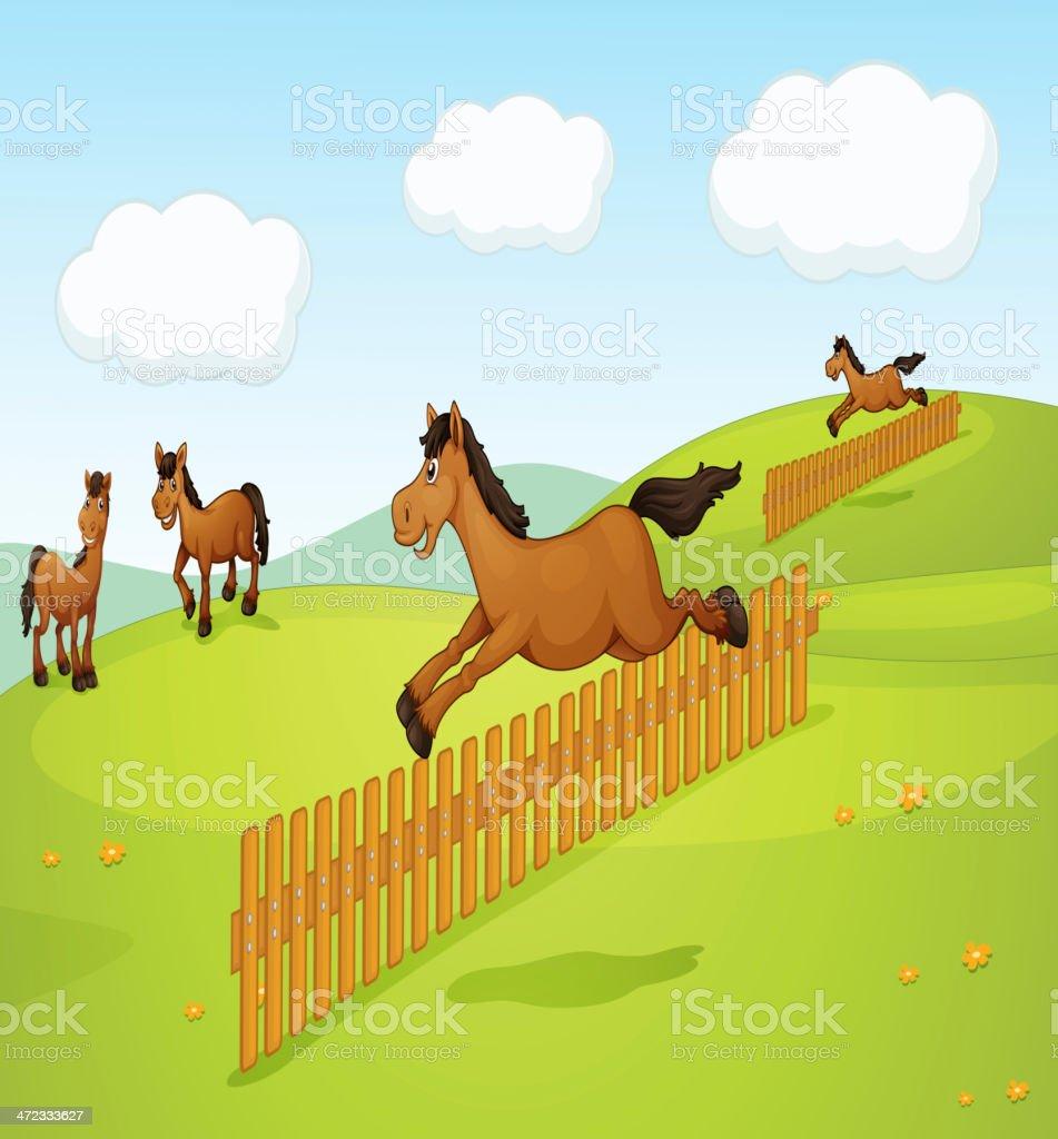 Four horses royalty-free stock vector art