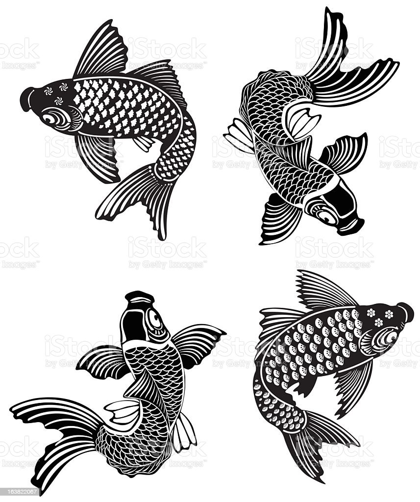 Four koi fish swimming in different directions vector art illustration