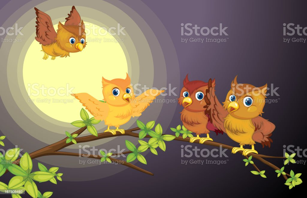 Four owls royalty-free stock vector art