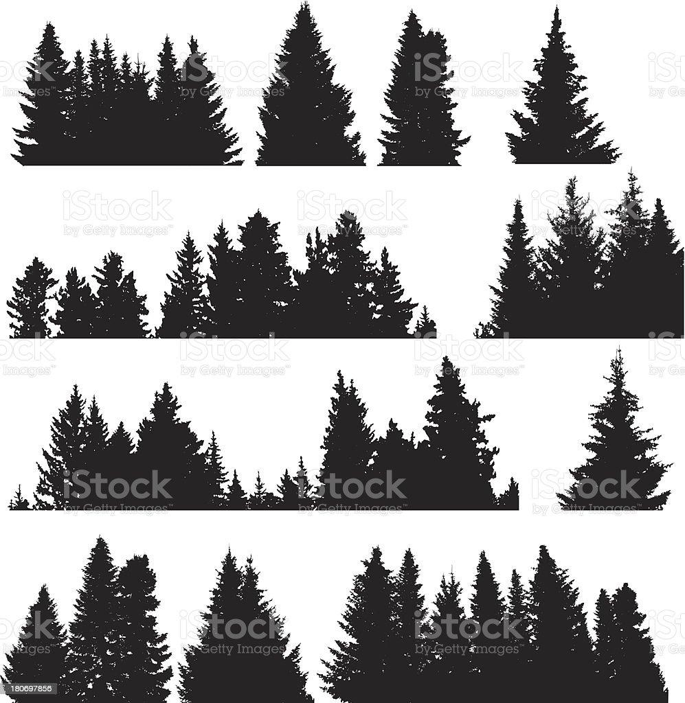 Four rows of black on white Fir trees vector art illustration
