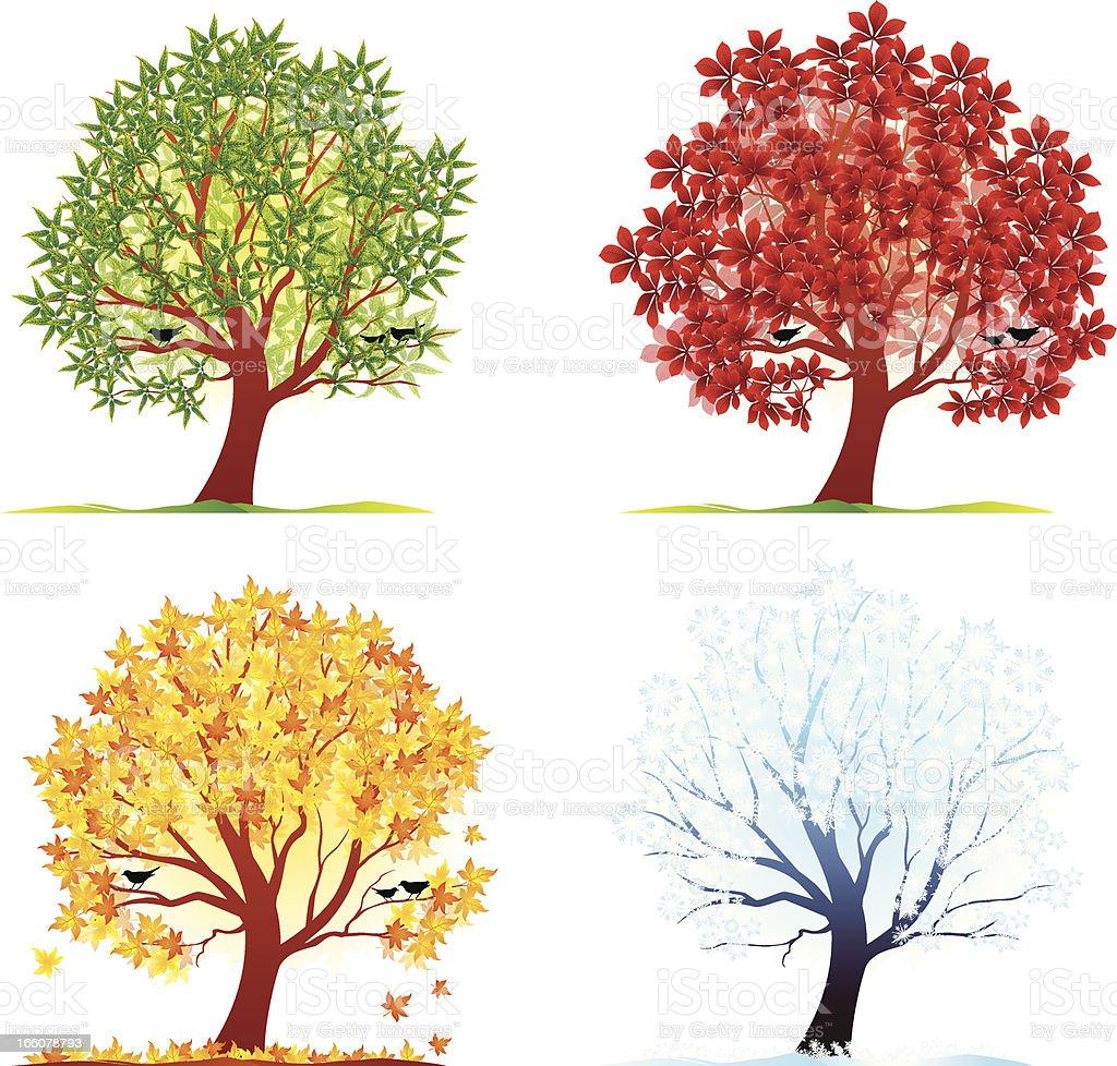 Four Season vector art illustration