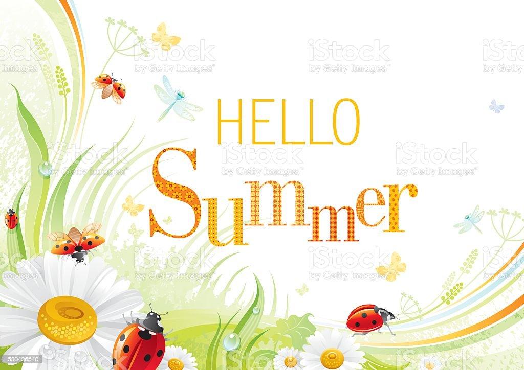 Four seasons: Summer banner, ladybug vector art illustration