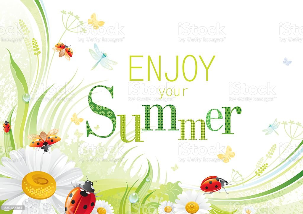 Four seasons: Summer banner, ladybug vector art illustration