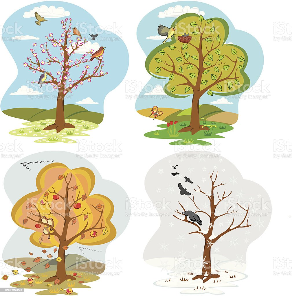 four seasons - tree royalty-free stock vector art