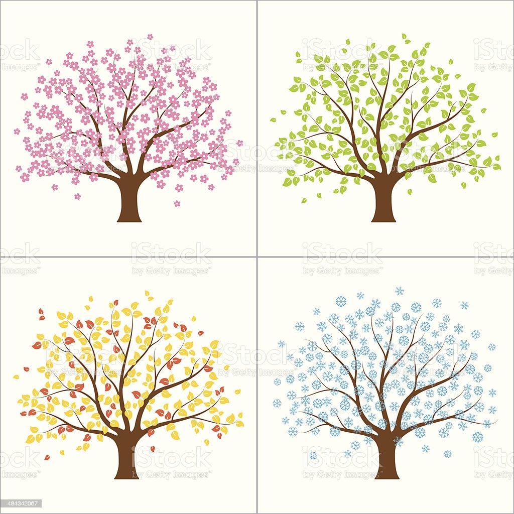 Four seasons tree vector art illustration