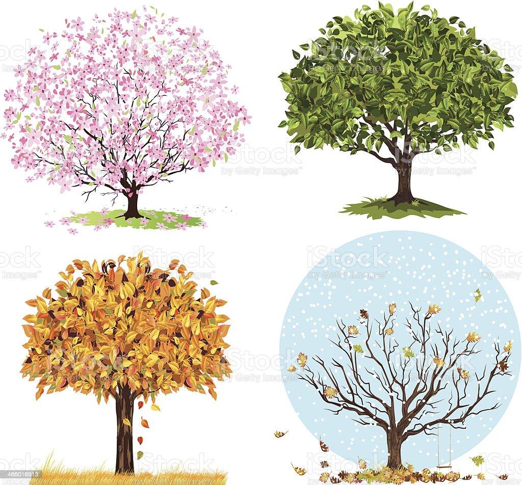 Four Seasons Trees vector art illustration