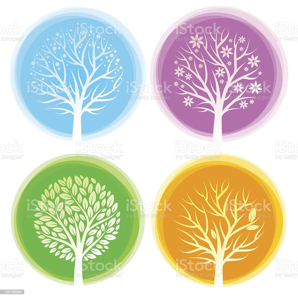 Four seasons vector trees vector art illustration