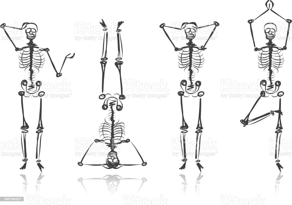 Four skeleton sketches in various poses vector art illustration