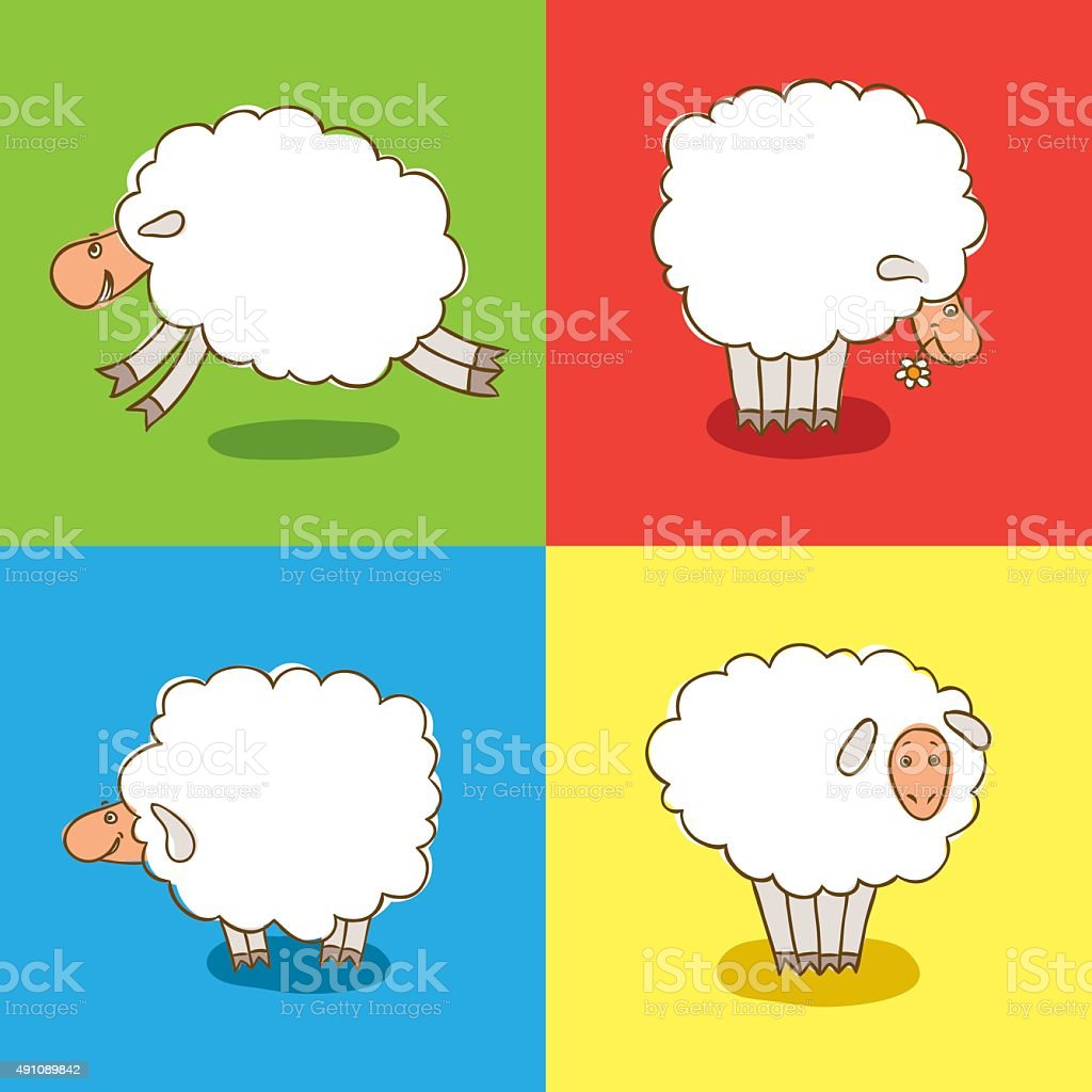 Four White Sheeps Isolated on colored background. vector art illustration
