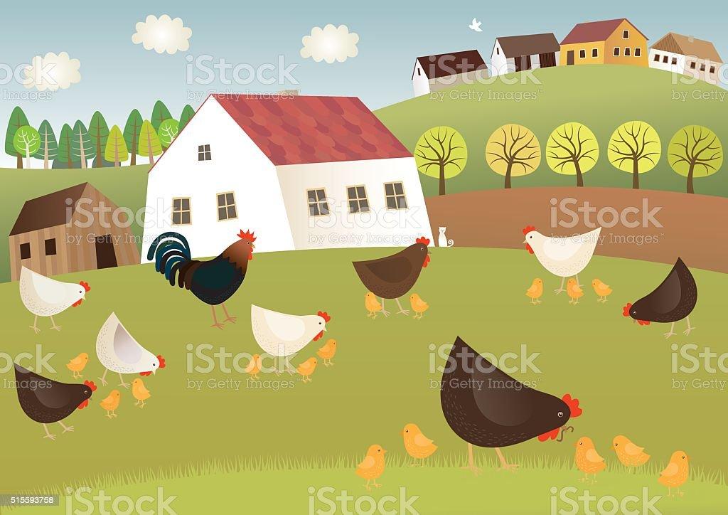 Fowls farm vector art illustration