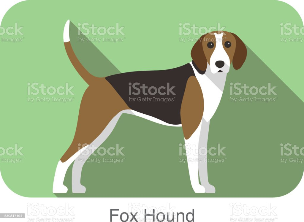 fox hound terrier standing and watching, vector illustration vector art illustration