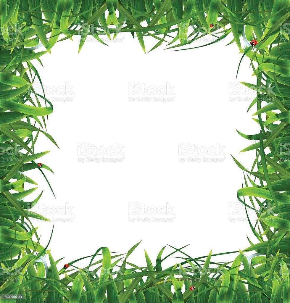 Frame of grass. Vector illustration vector art illustration